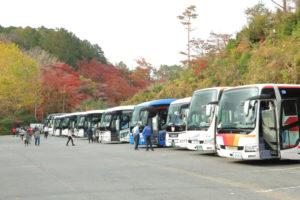 伊豆市修善寺「モミジ林」入口の大型駐車場