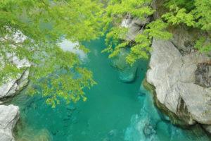 四国周遊「祖谷のかずら橋」橋上からのブルー一色の川面