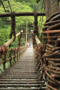 四国周遊「祖谷のかずら橋」太いツルを編んだかずら橋
